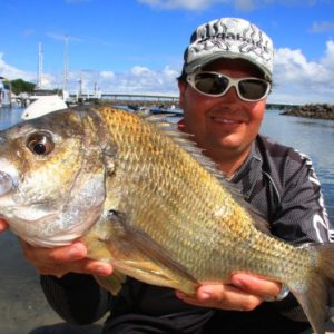 Nice-fish-560x373